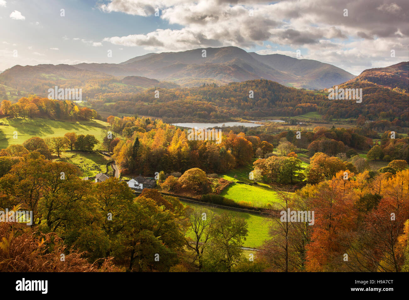 Elter Water with Coniston Mountain Range in distance Lake District Cumbria Stock Photo