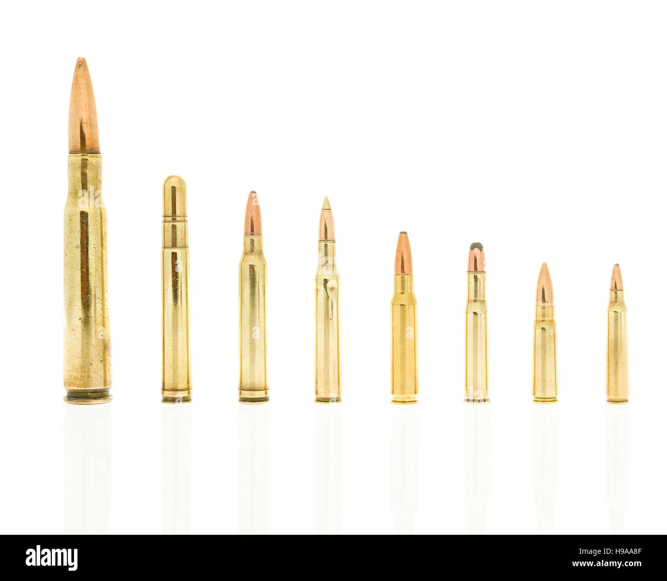 Rife rounds on an isolated background including 223, 5.56 nato, 39, 7.62 AK47, 30-30 win, 308 win, 270 win, 300 - Stock Image