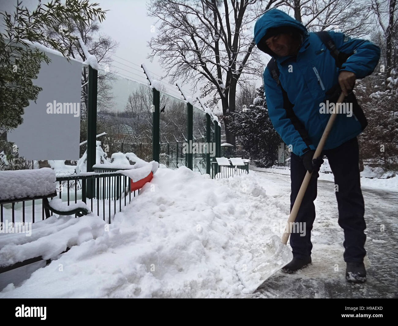 Man cleans snow in the yard with a shovel - Stock Image