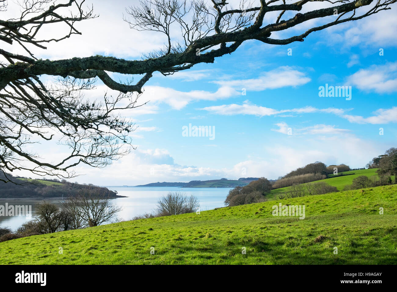 "a view looking towards the ""Carrick Roads"" on the river Fal in Cornwall, England, UK Stock Photo"