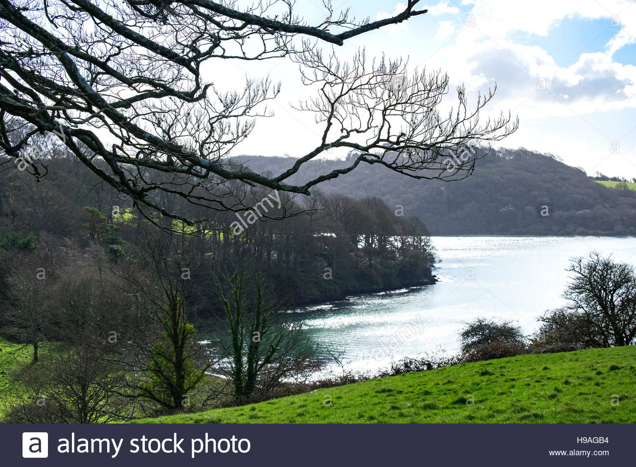 """a view looking towards the """"Carrick Roads"""" on the river Fal in Cornwall, England, UK Stock Photo"""