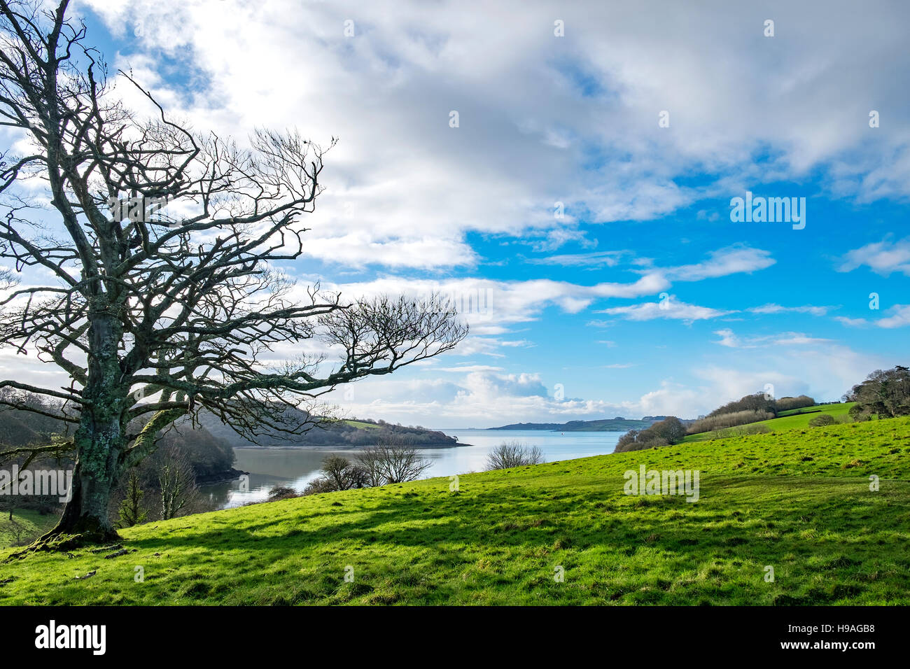 a view looking towards the 'Carrick Roads' on the river Fal in Cornwall, England, UK - Stock Image