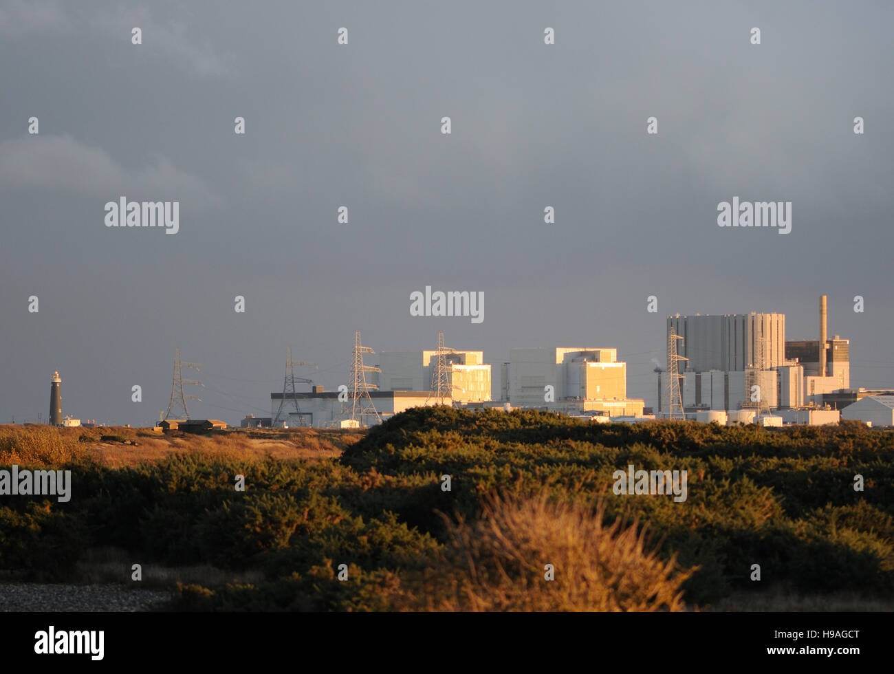 Dungeness nuclear power station with Dungeness Nature Reserve in the foreground. Dungeness, Kent, UK - Stock Image