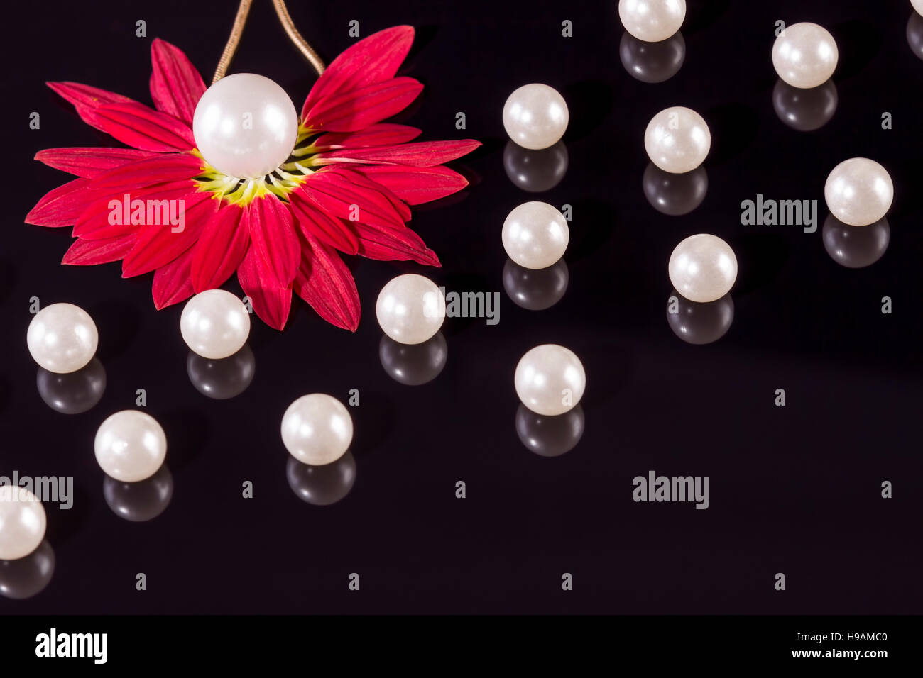 White pearls necklace on black background. Focus on the big pearl from the left corner over red petals! - Stock Image