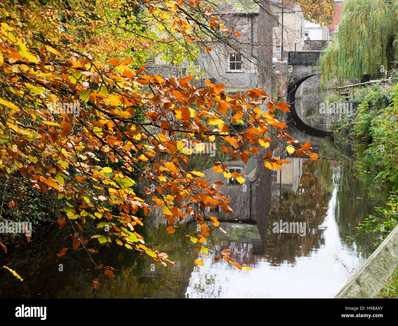 The Springs Branch of the Leeds and Liverpool Canal in Autumn Skipton North Yorkshire England - Stock Image