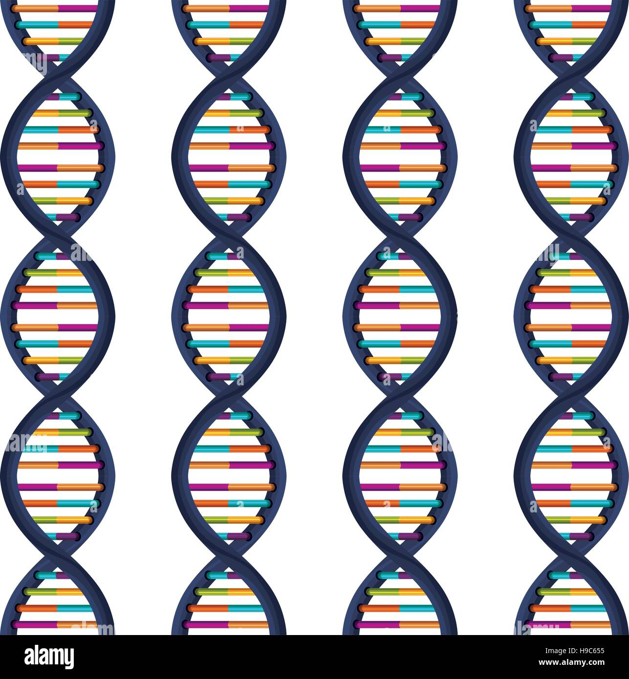 sequence DNA with bases in color - Stock Image