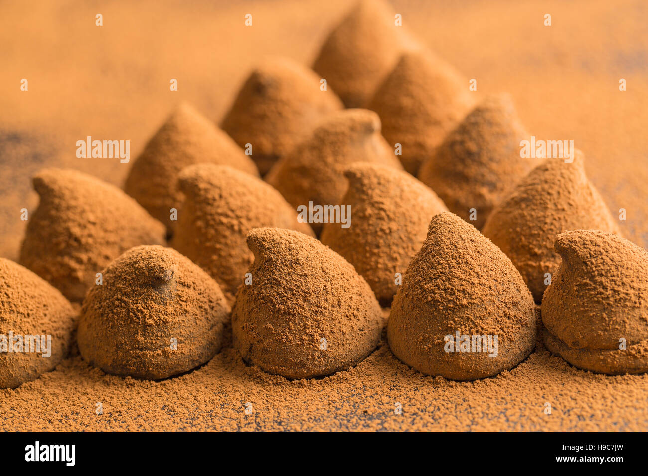 The sweet chocolate truffles and cocoa powder. - Stock Image