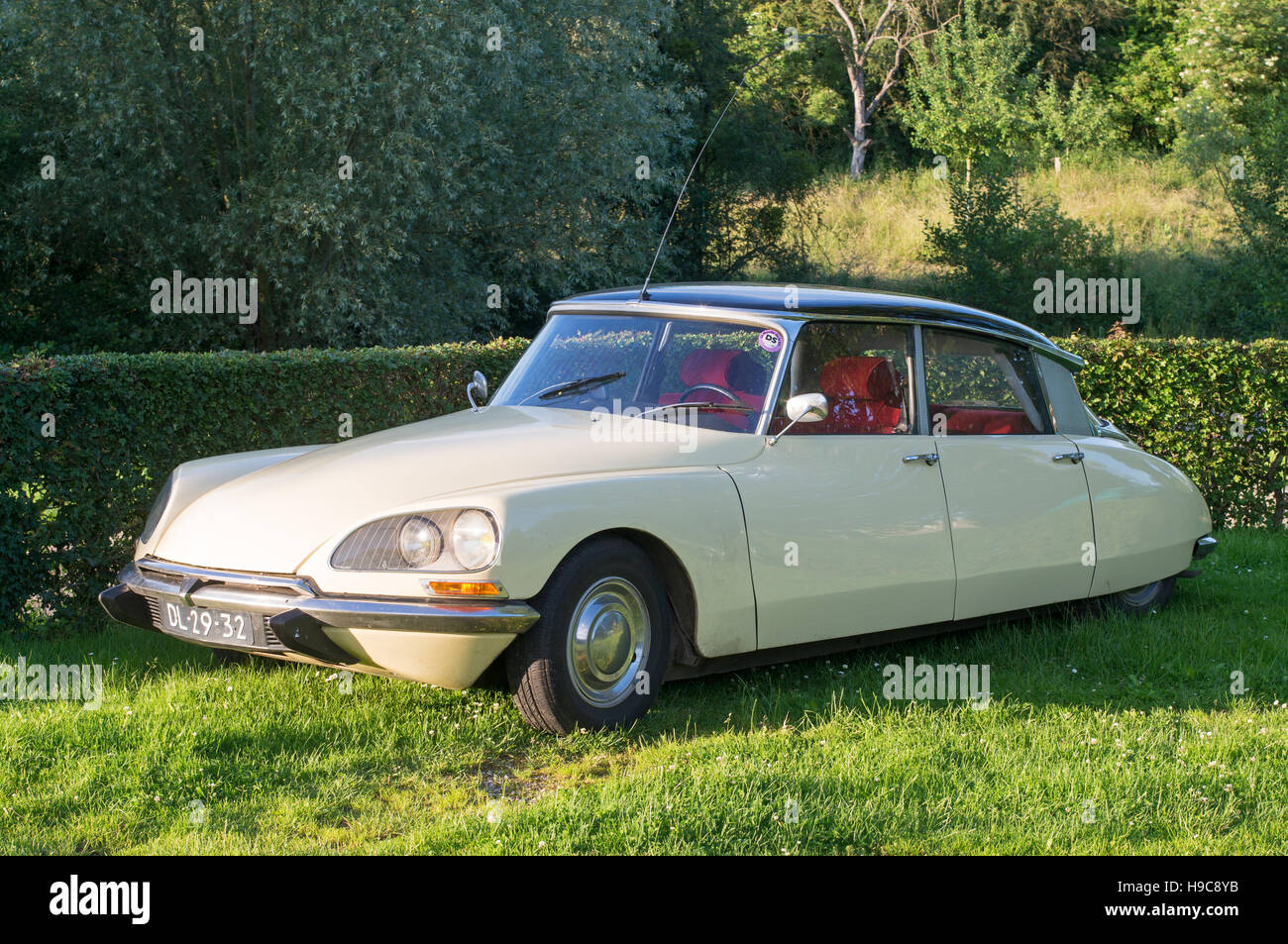 Citroën DS classic car in two tone ivory and black - Stock Image
