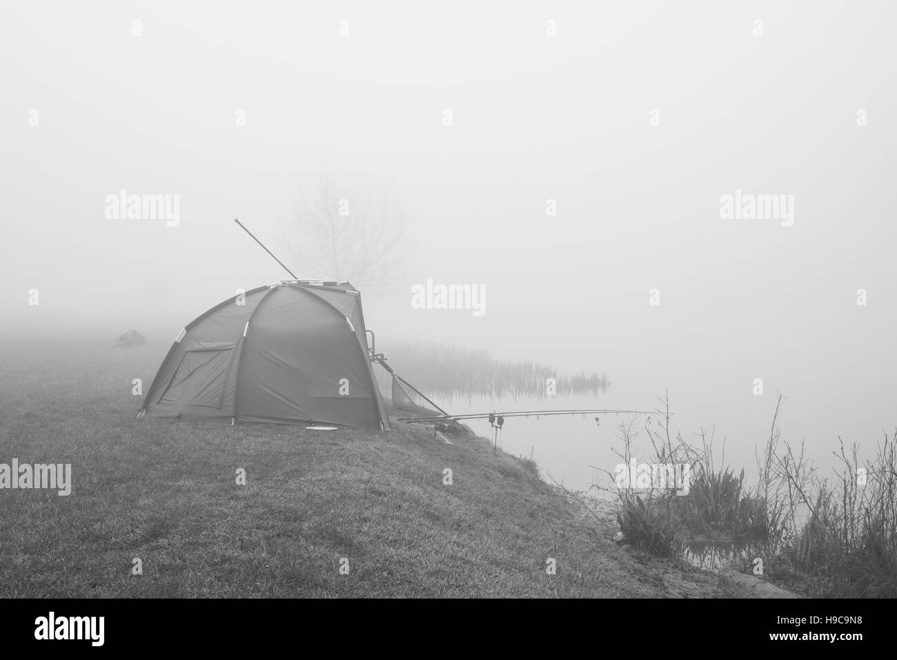 A fisherman in his tent by the banks of the River Thames on a misty morning in Dumpsey Meadow, Chertsey, Surrey - Stock Image