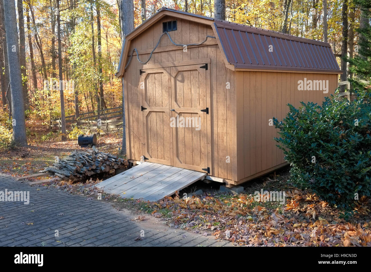 Storage shed and fall foliage - Stock Image