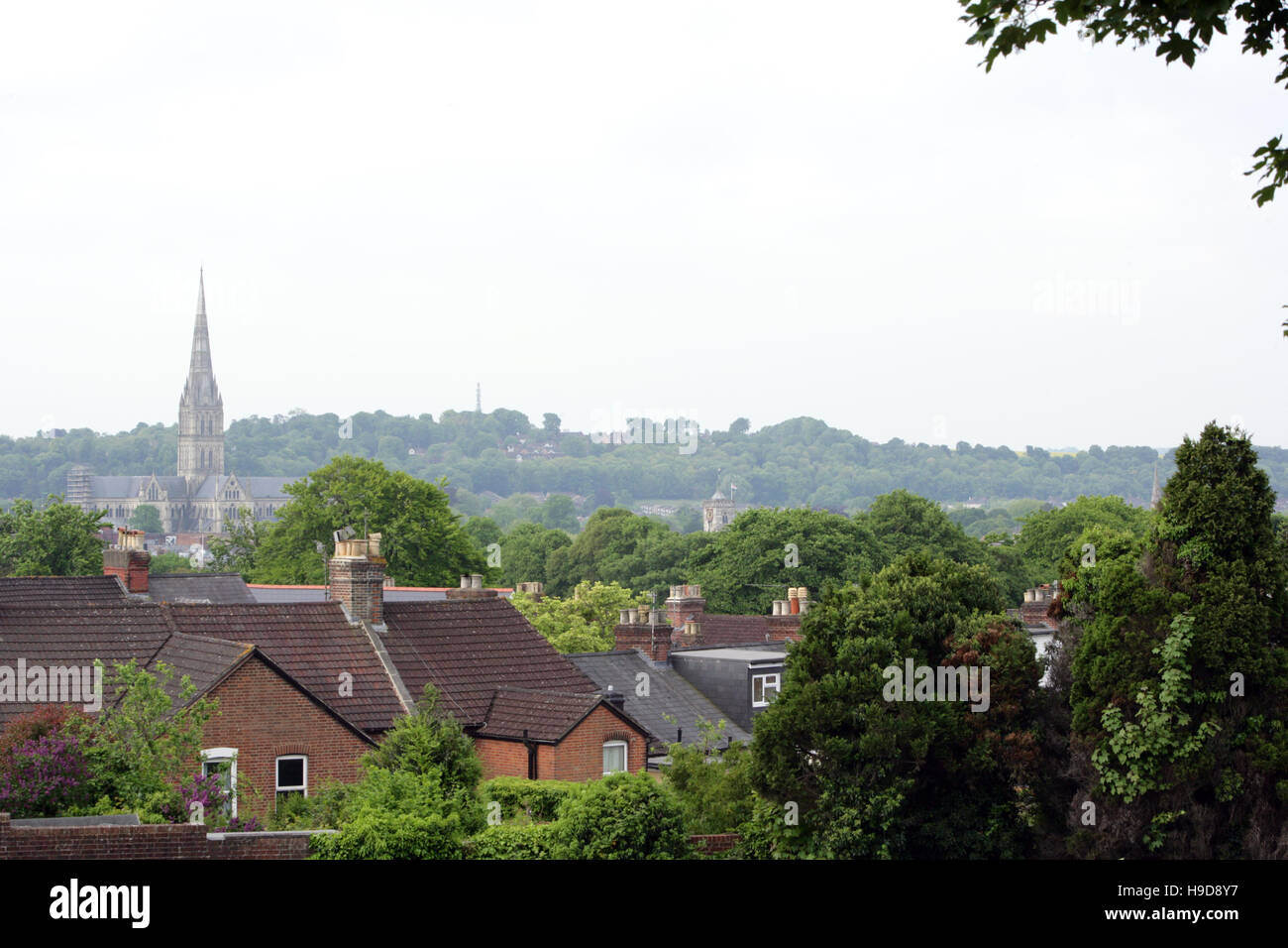 Salisbury Cathedral viewed across rooftops. Stock Photo