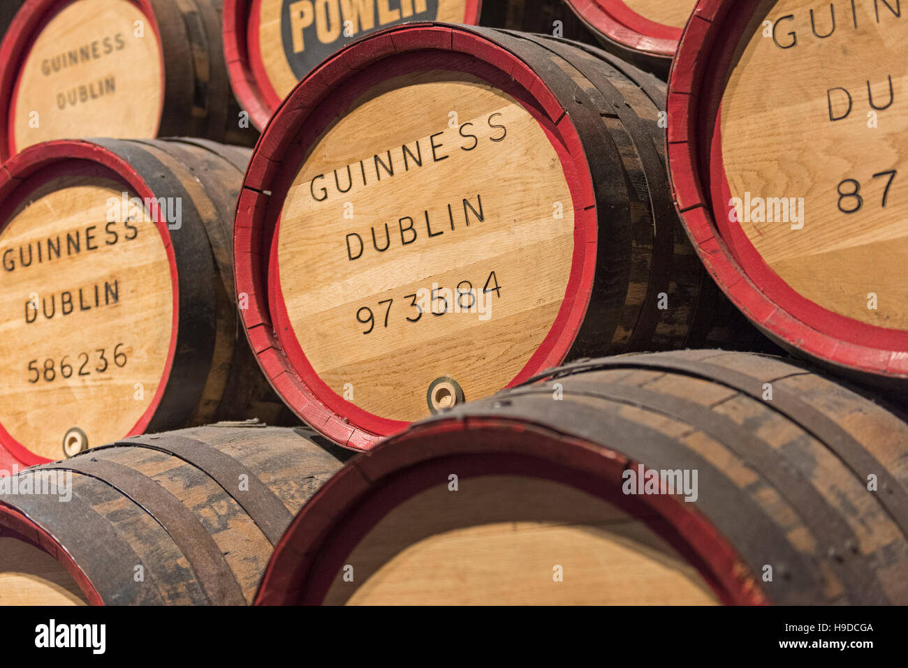 Guinness Storehouse Beer barrels Dublin Ireland - Stock Image