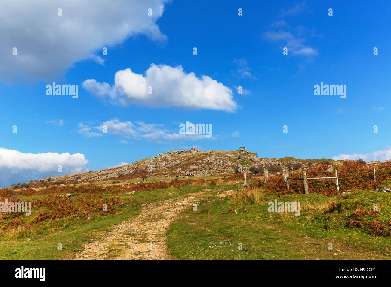 The view to the Cheesewring high on Bodmin Moor - Stock Image