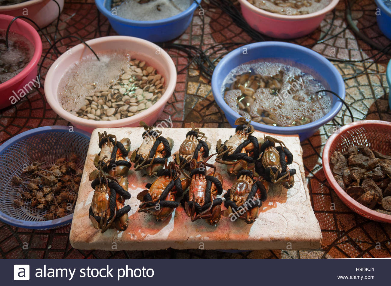 Cat Ba Vietnam Fresh bound up crabs outside a seafood restaurant. - Stock Image
