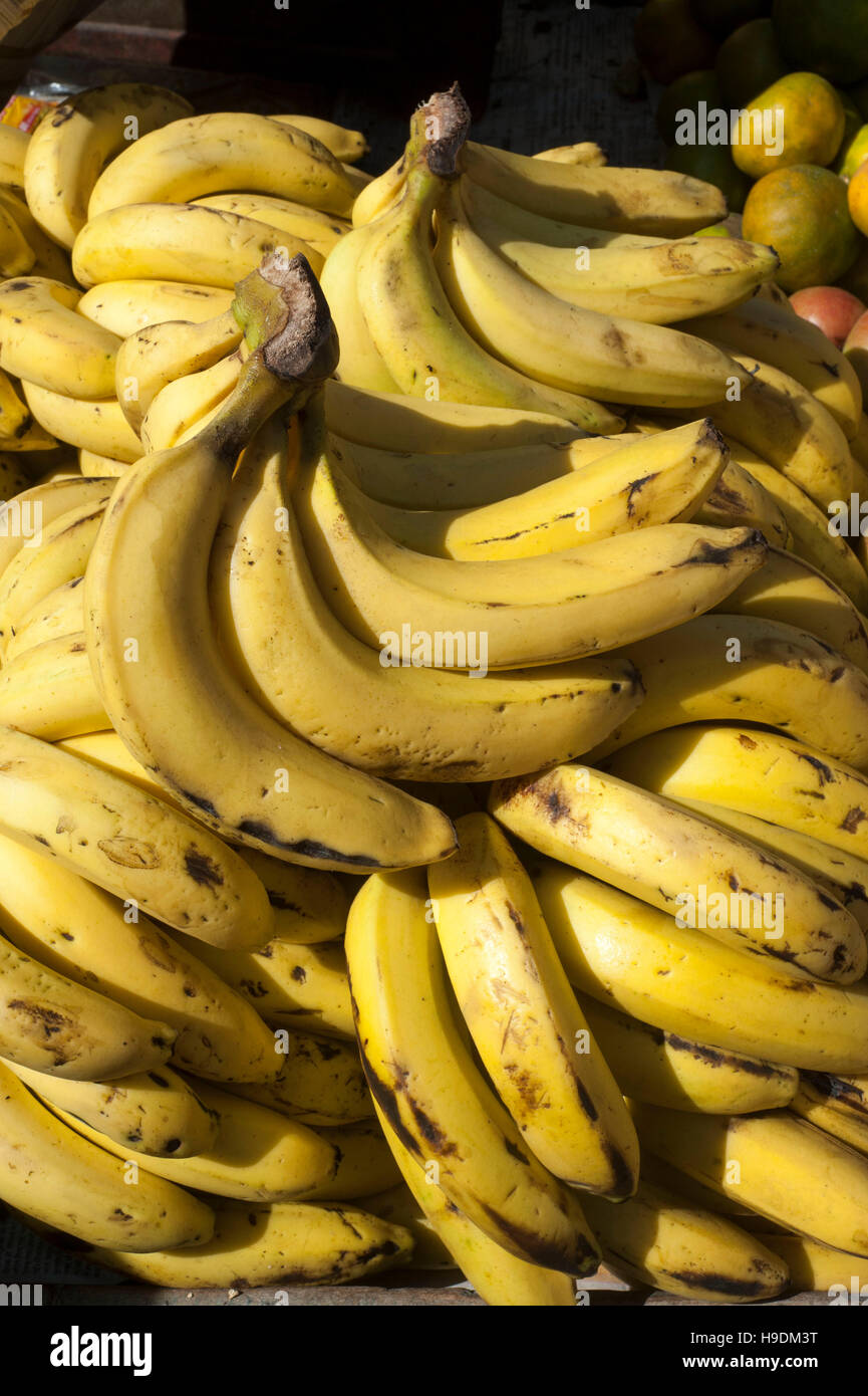 A banana is a fruit or berry. Little known facts about bananas 50