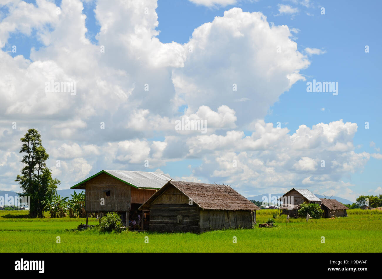 Typical rural landscape in Myanmar with traditional bamboo huts and blue deep sky Stock Photo