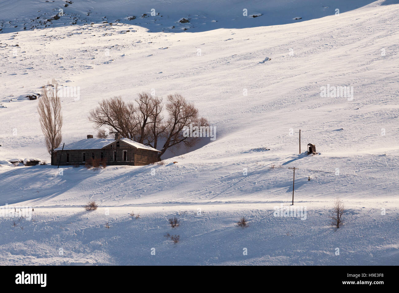Sarikamis is one of the most beautiful ski resort in Kars province ,Turkey - Stock Image