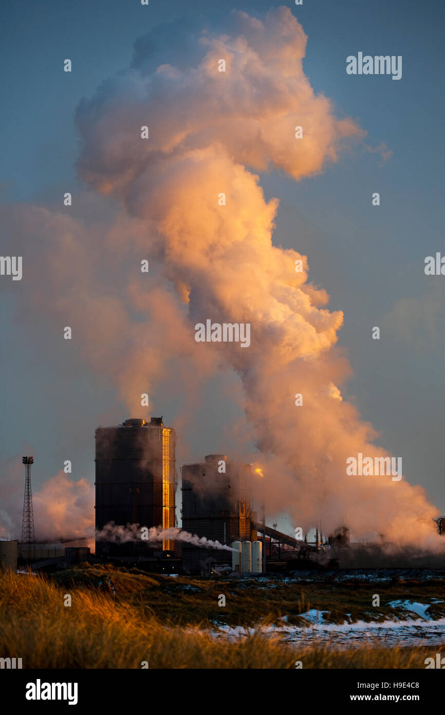 British Steel Industry Plant industrial site Coke Ovens. Steelworks emitting steam plume at Middlesbrough, Redcar, Stock Photo