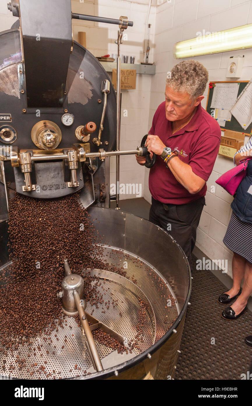 Craig Kelly the head roaster operating the roasting machine at Green Farm coffee in Rackheath , Norwich , Norfolk - Stock Image