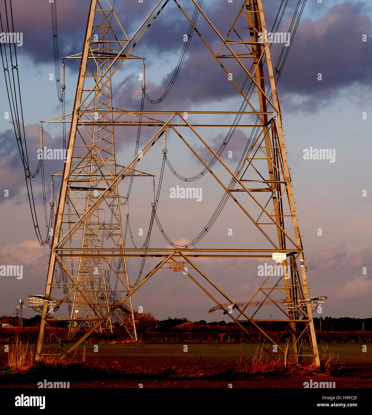 The National Grid pylons near Newark, Nottinghamshire, England, UK - Stock Image