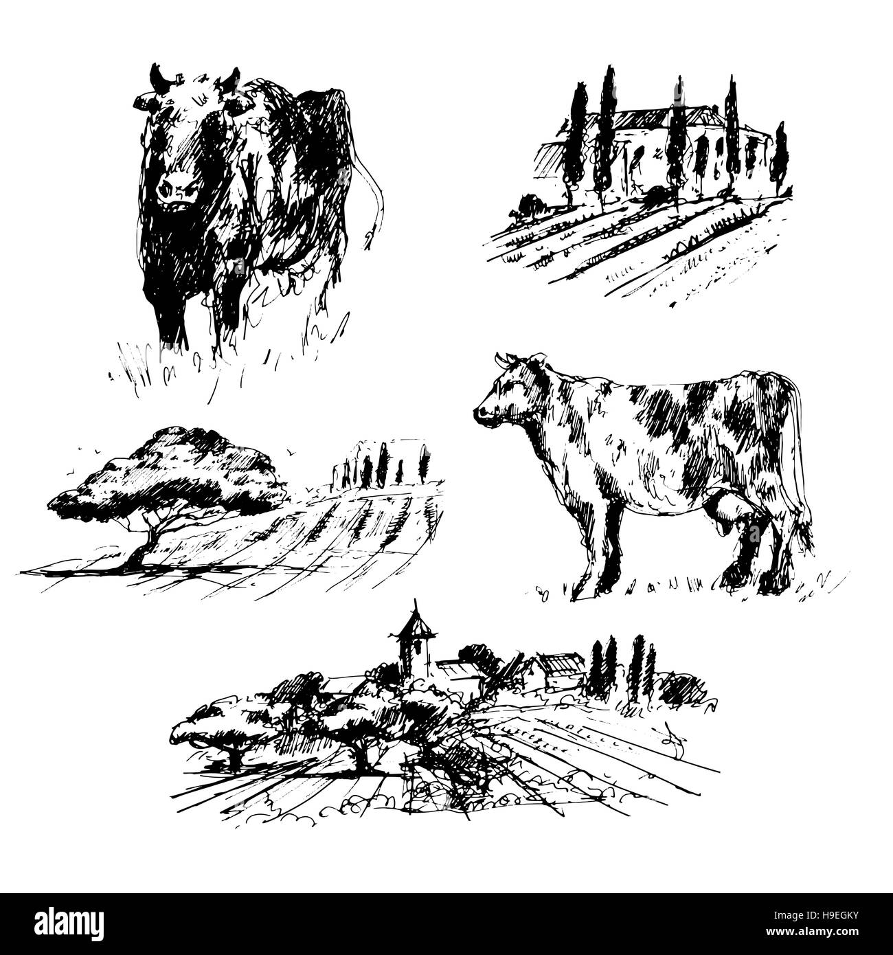 countryside collection set of hand drawn landscapes and cows stock