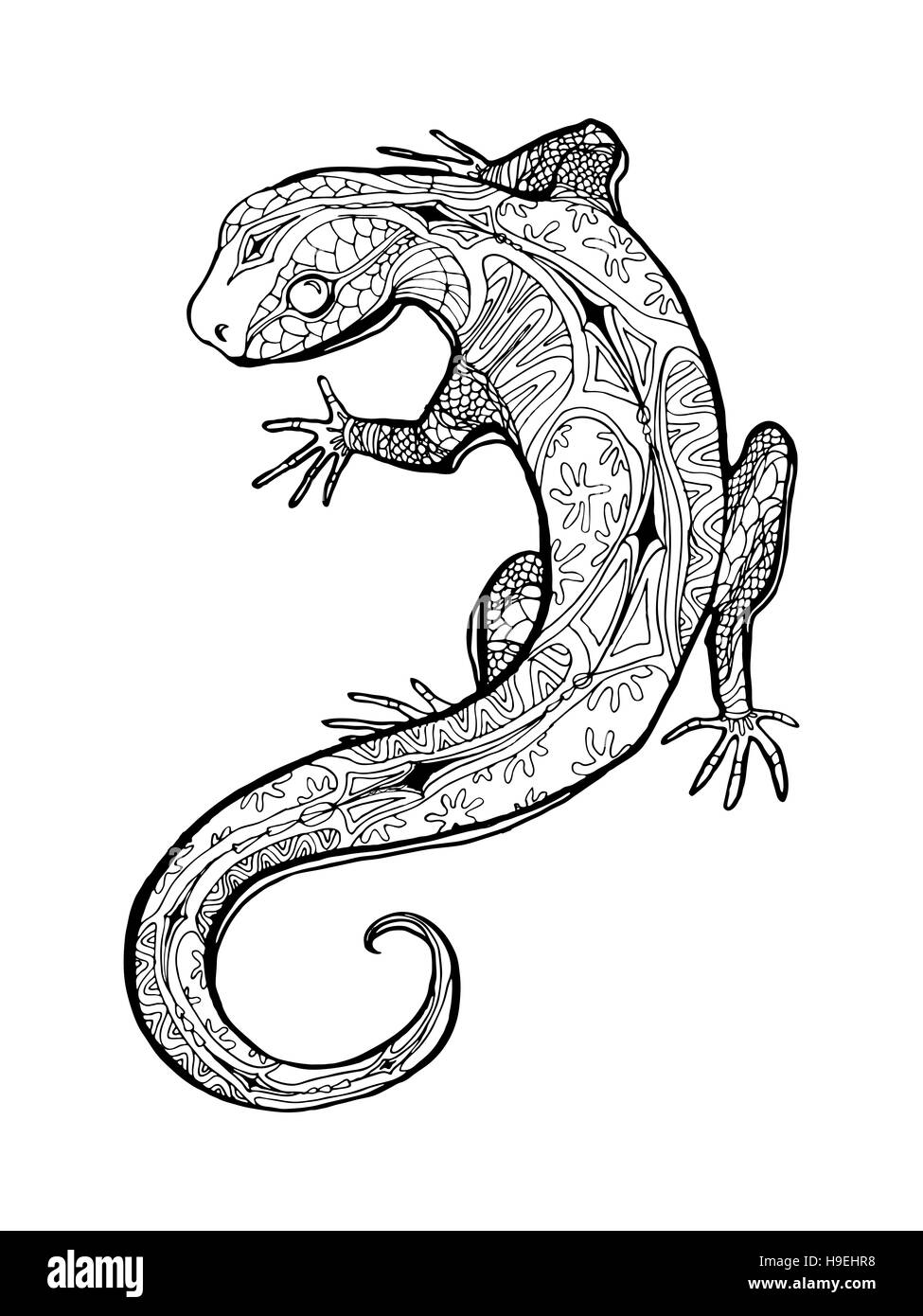 Lizard Tropical Illustration For Adult Coloring Book Hand Drawn Line Art