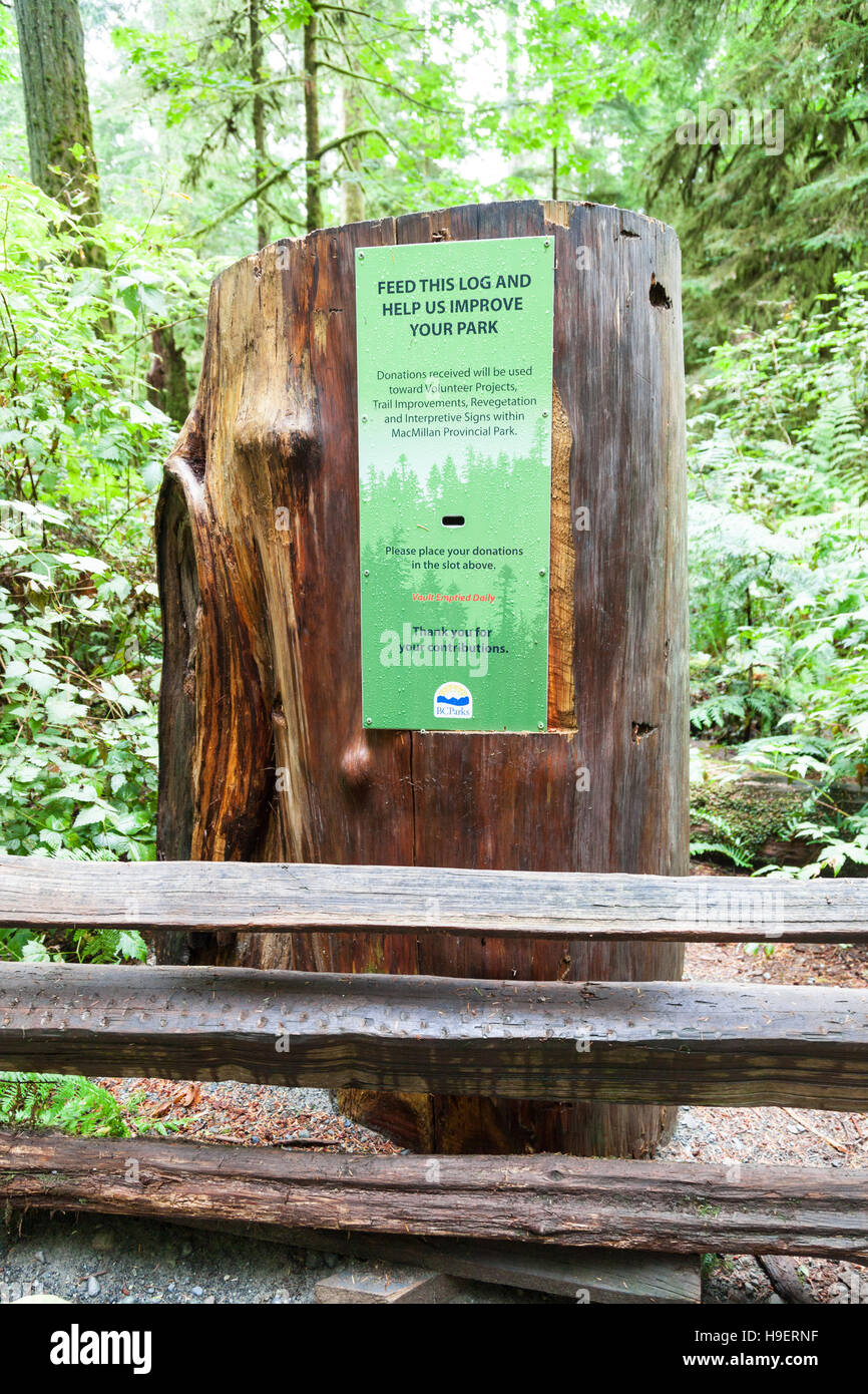 A donation box in a tree stump at Cathedral Grove, MacMillan Provincial Park, Vancouver Island, British Columbia, - Stock Image
