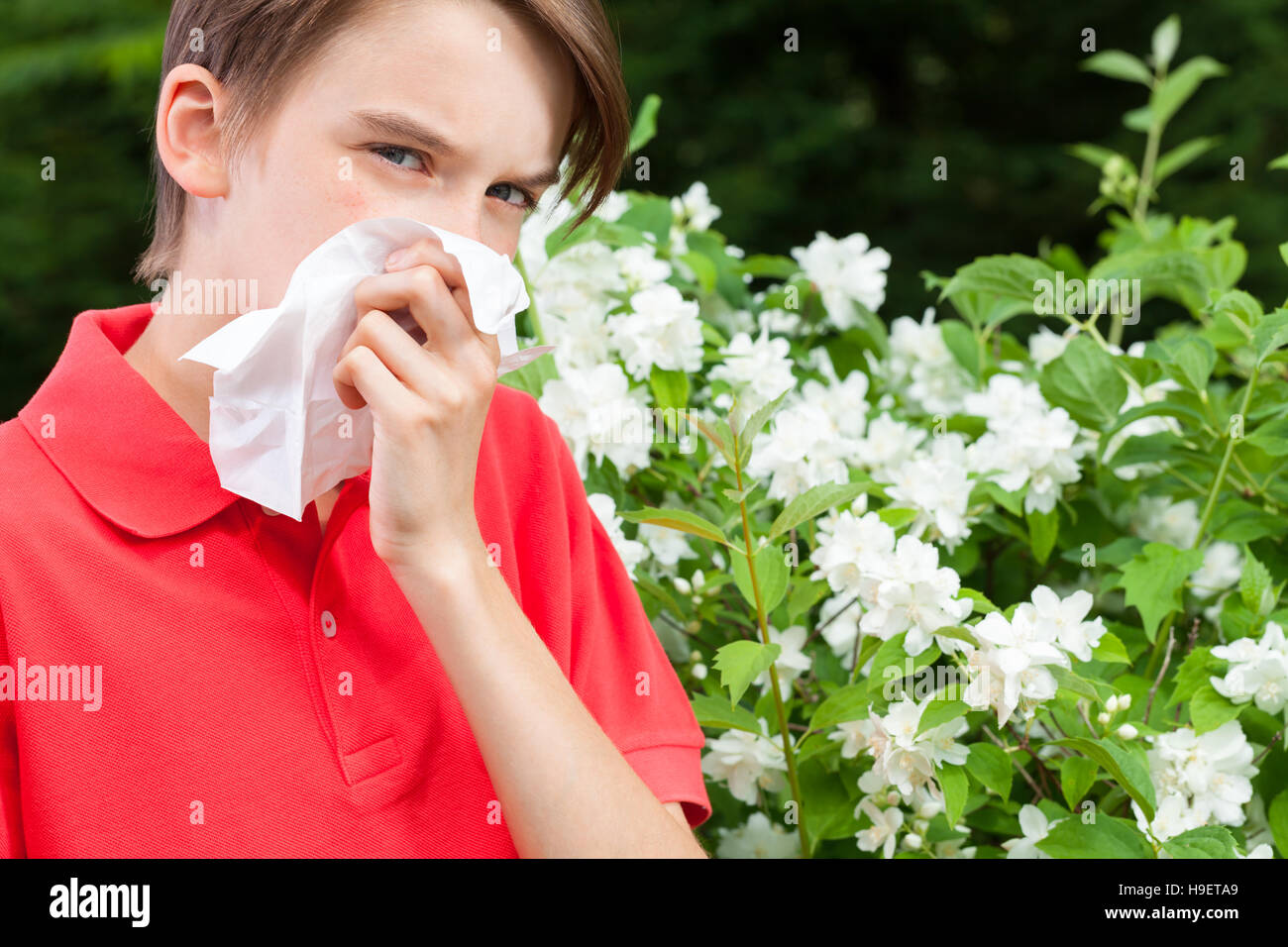 Teenage boy with hay fever blowing his nose allergic to bloom flowers in a spring garden - Stock Image