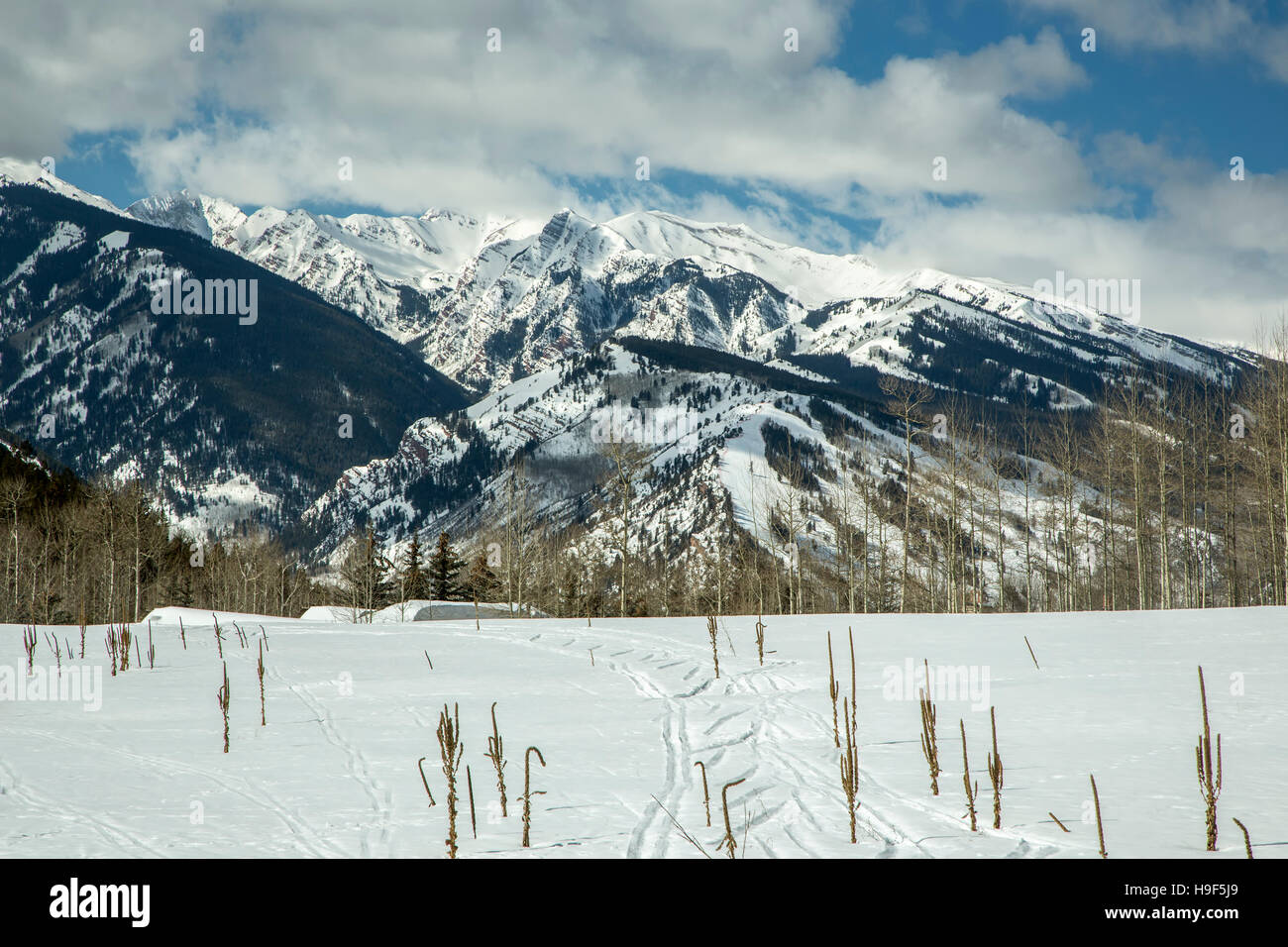 Ski tracks on snow, snow-covered mountains in background, trail to Benedict Huts, near Aspen, Colorado USA - Stock Image