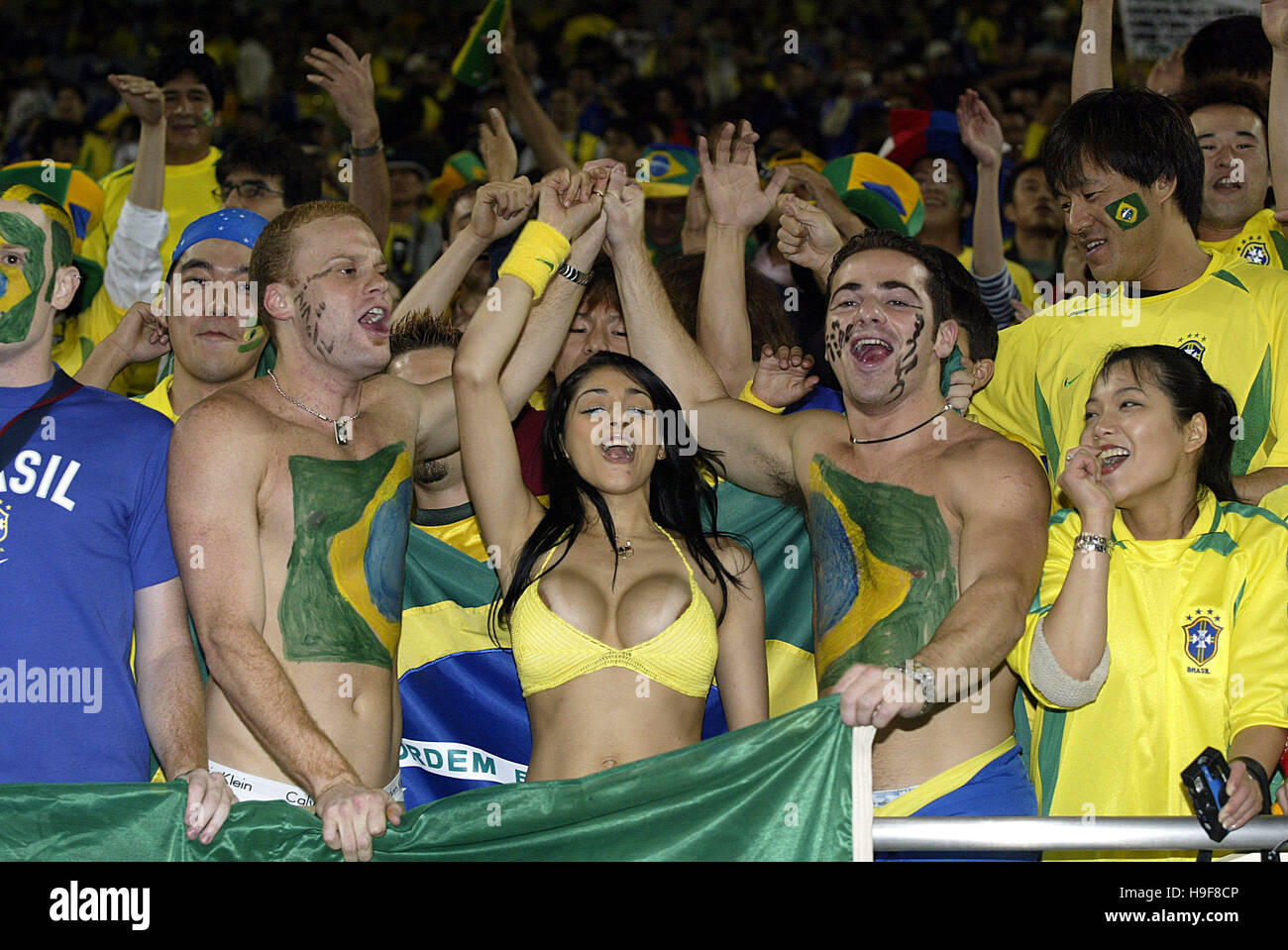 Above told Brazil world cup fans absolutely agree