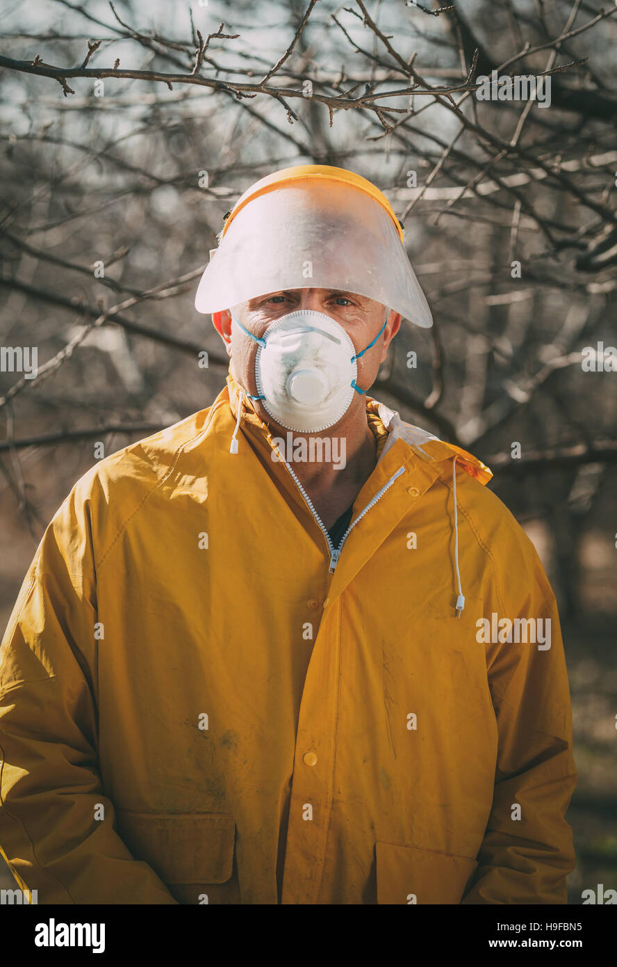 Spraying In The Orchard - Stock Image