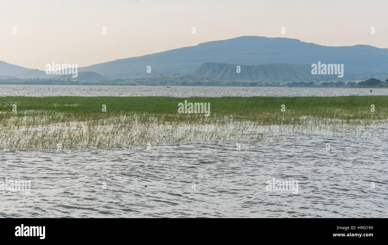 The beautiful Hawassa lake surrounded by lush vegetation and mountains at a distance - Stock Image