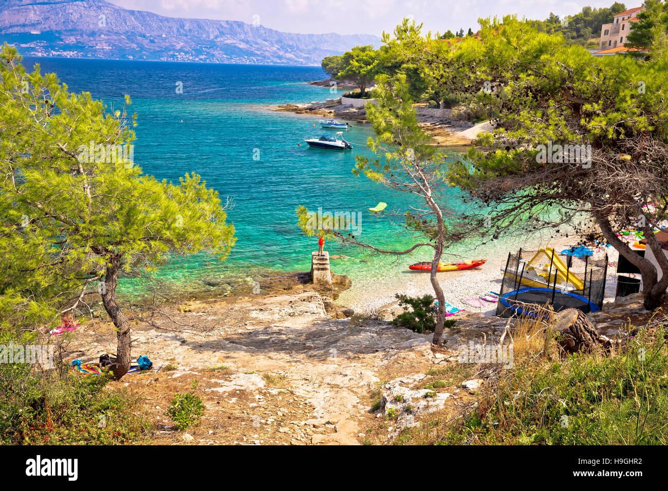 Turquoise beach in pine trees on Brac island, Dalmatia, Croatia - Stock Image