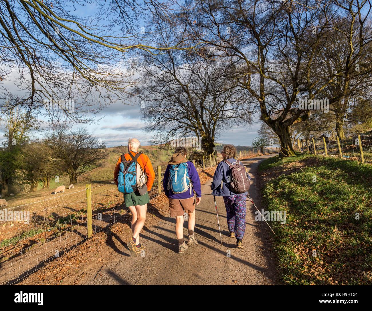 Three walkers on track through farmland, Crug Mawr, Wales, UK - Stock Image