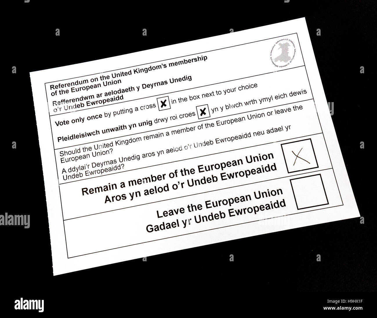 Voting paper for the 2016 UK referendum on remaining or leaving the European Union - Stock Image