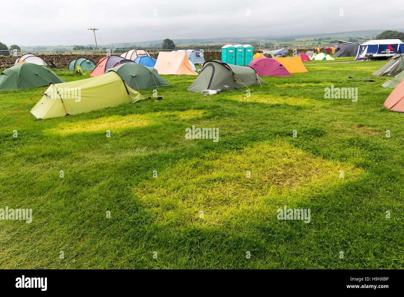Grass affected by tent cover on campsite, Yorkshire, UK - Stock Image