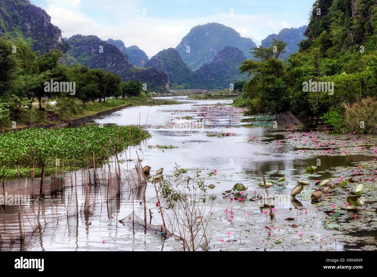 Ninh Binh, Hoa Lu, Vietnam, Asia - Stock Image