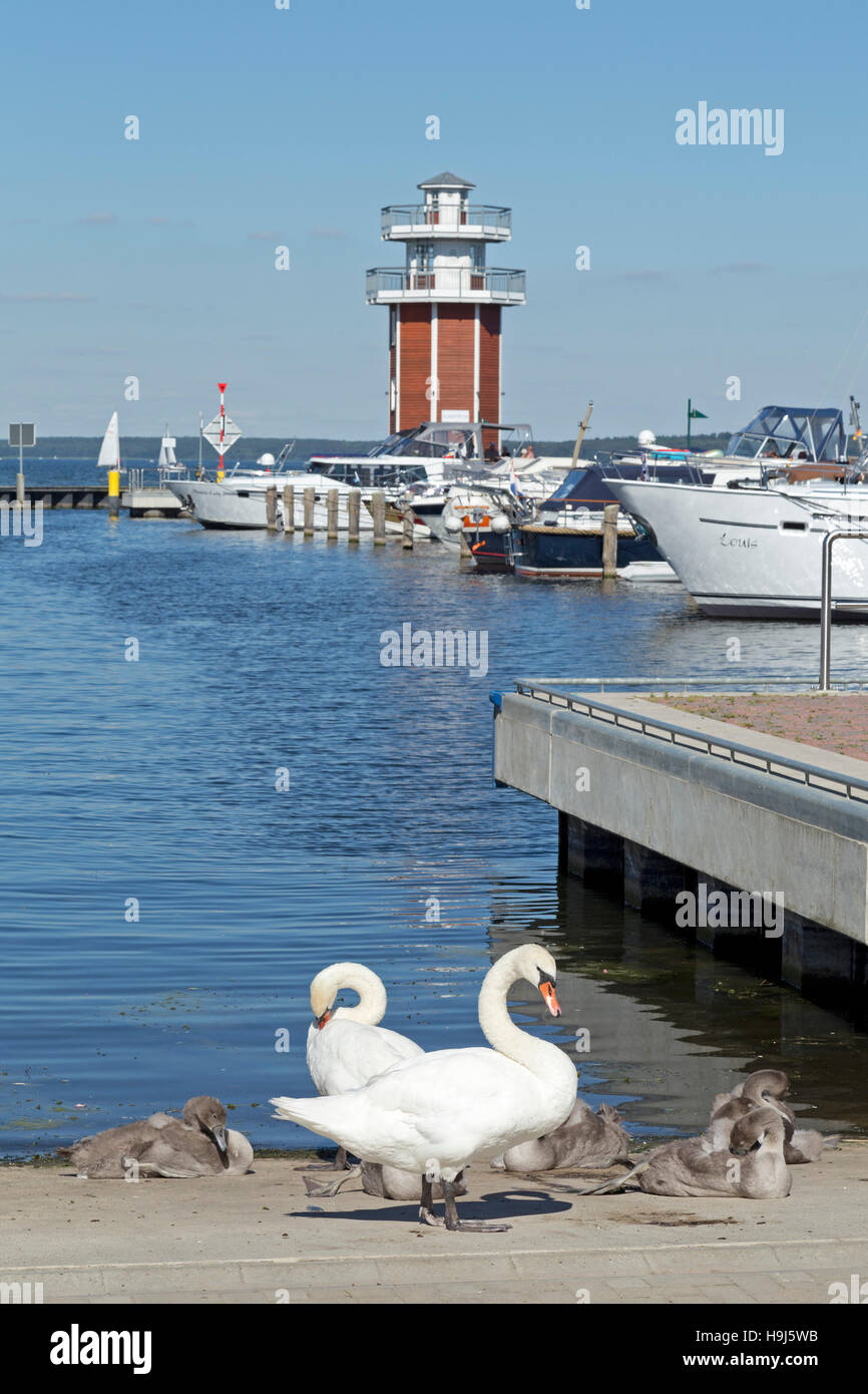look-out and marina, Plau am See, Mecklenburg Lakes, Mecklenburg-West Pomerania, Germany Stock Photo