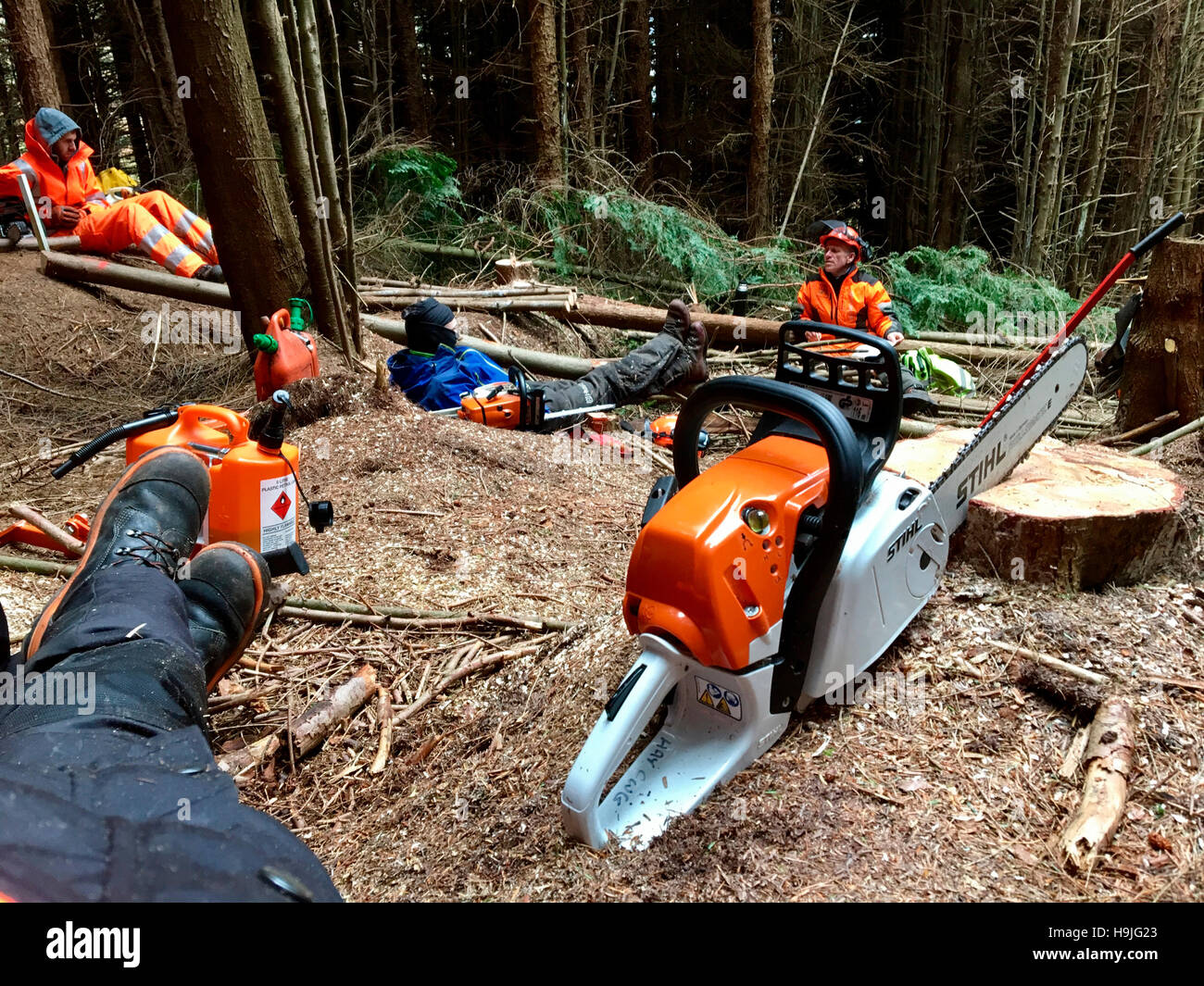 Stihl chainsaw stock photos images