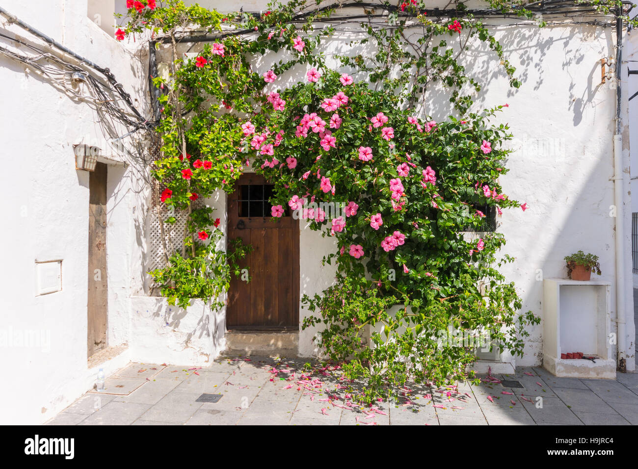 Spain, Balearic Islands, Ibiza, Eivissa, old town Dalt Vila - Stock Image
