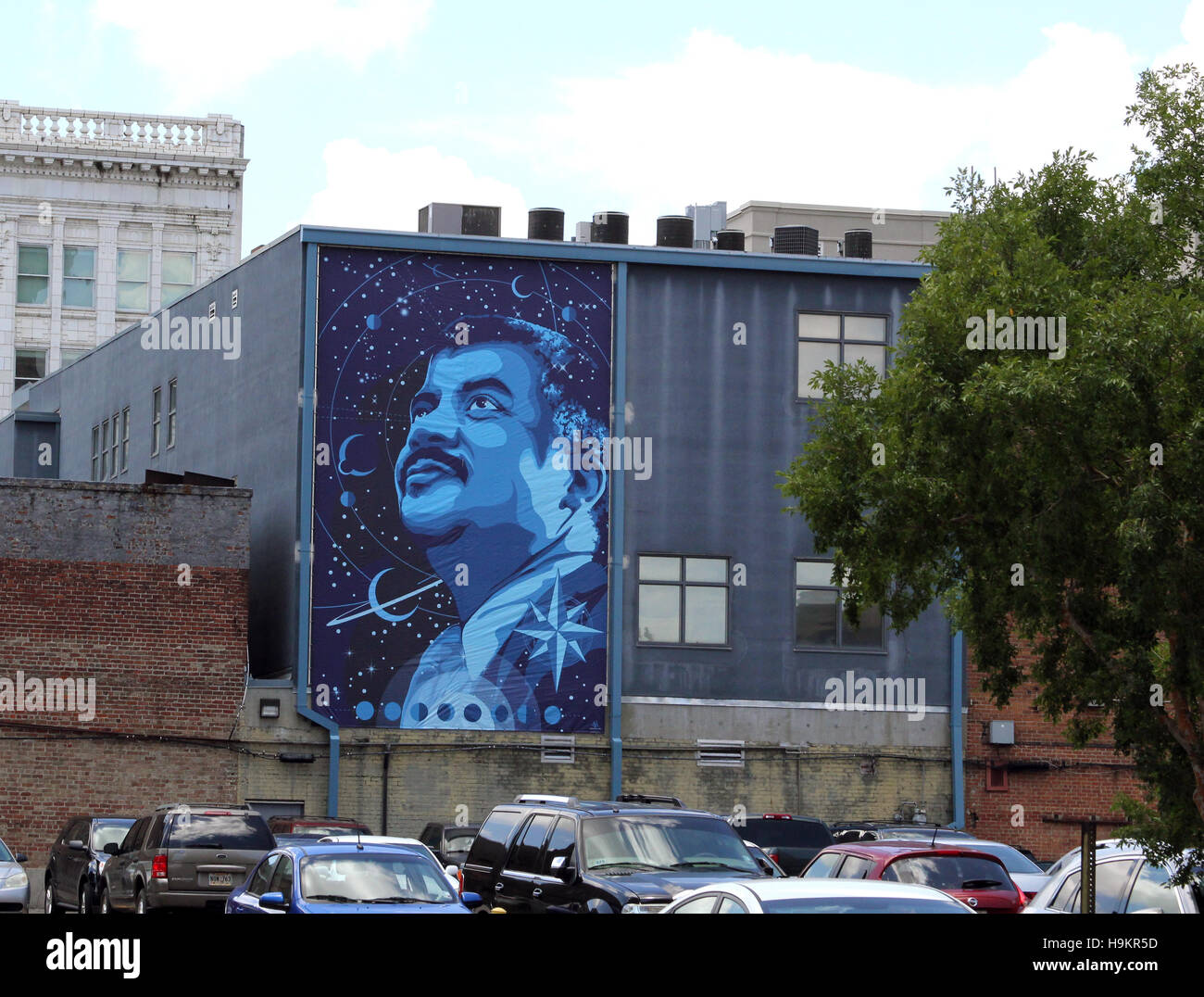 Wall Mural 7 Tribute to Dr Neil deGrasse Tyson by Vance Kelly