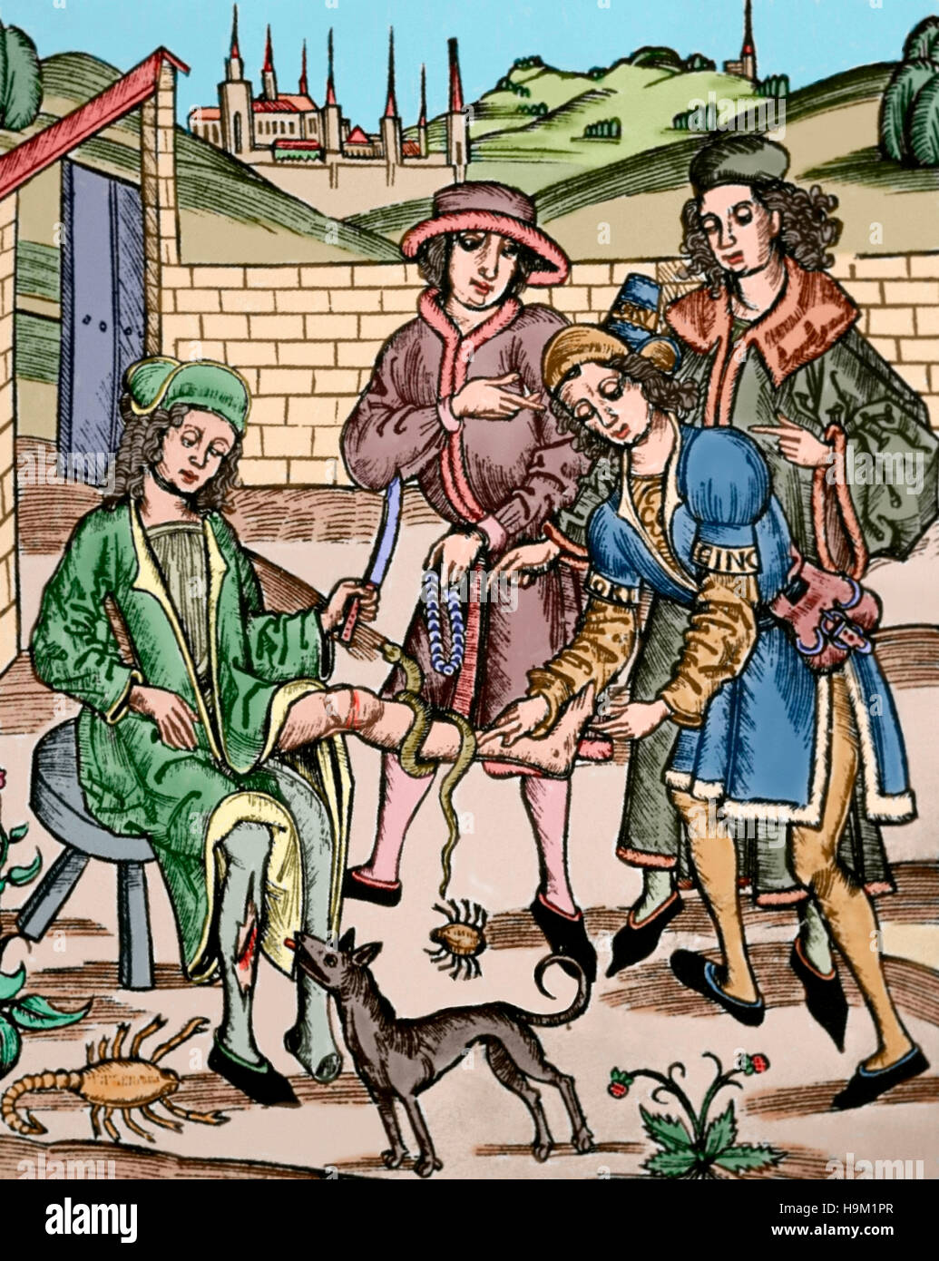 Medicine. 15th century. A man is cured due to the injures caused by dangerous animals: a rabid dog, an scorpion - Stock Image
