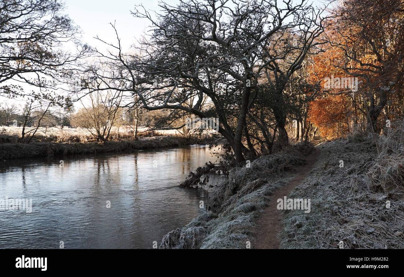 RIVER TYNE ON A FROSTY DAY, HADDINGTON SCOTLAND - Stock Image