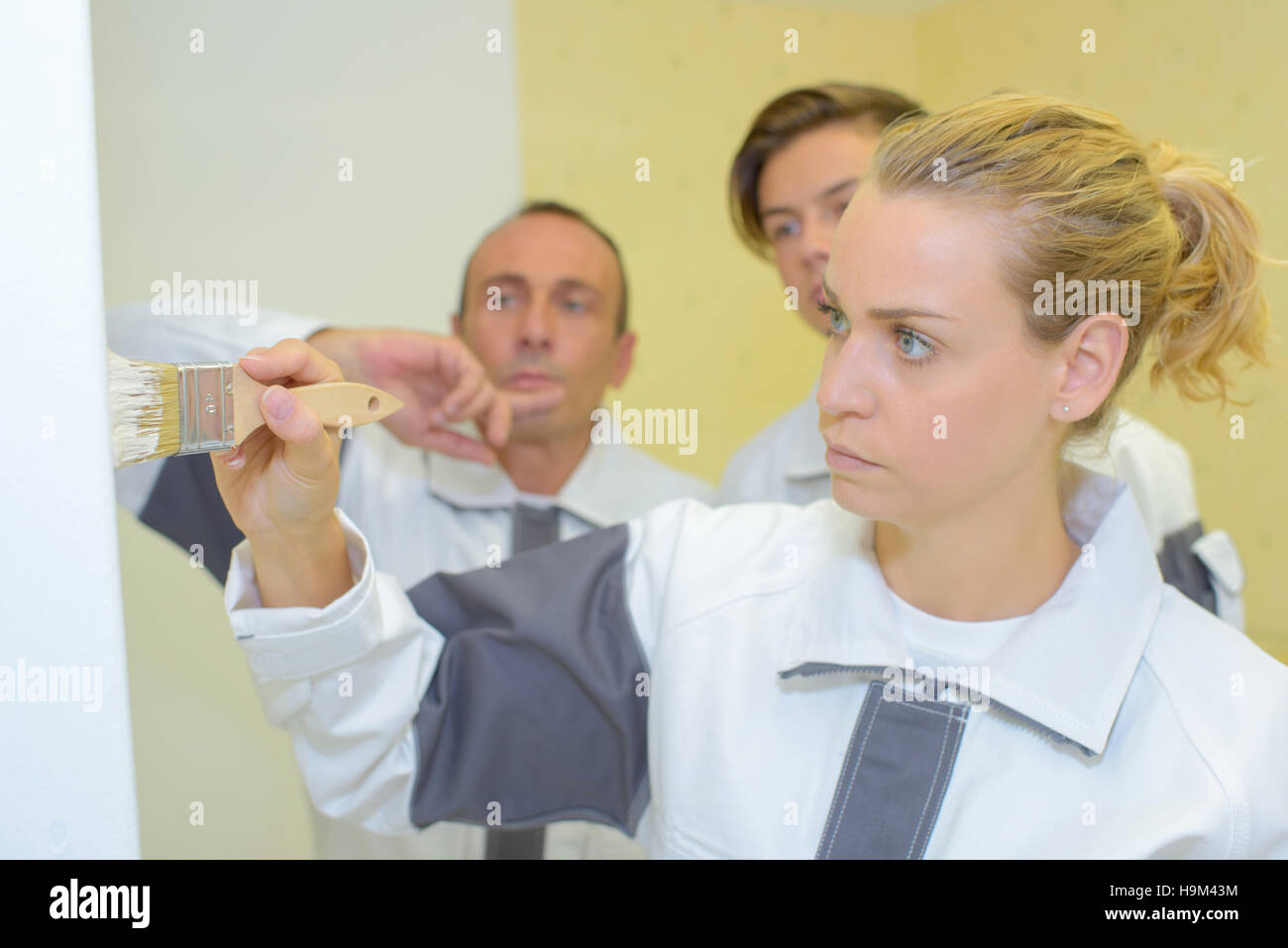 applying paint on the wall - Stock Image