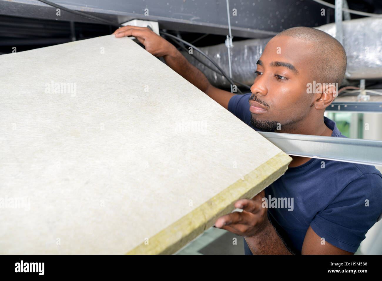Builder holding board in roofspace Stock Photo