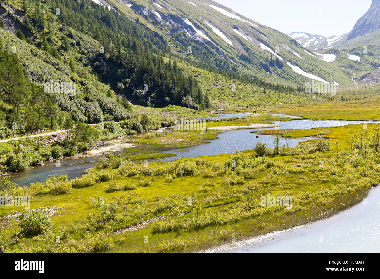Val Veny Valle d'Aosta Italy creek water green meadows trees snow summer travel - Stock Image