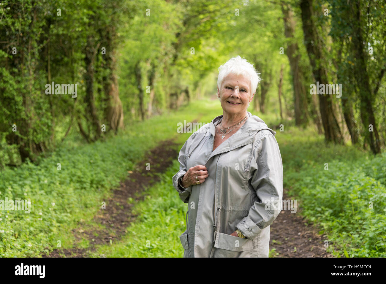 Dame Judi Dench posing in a countryside location Stock Photo