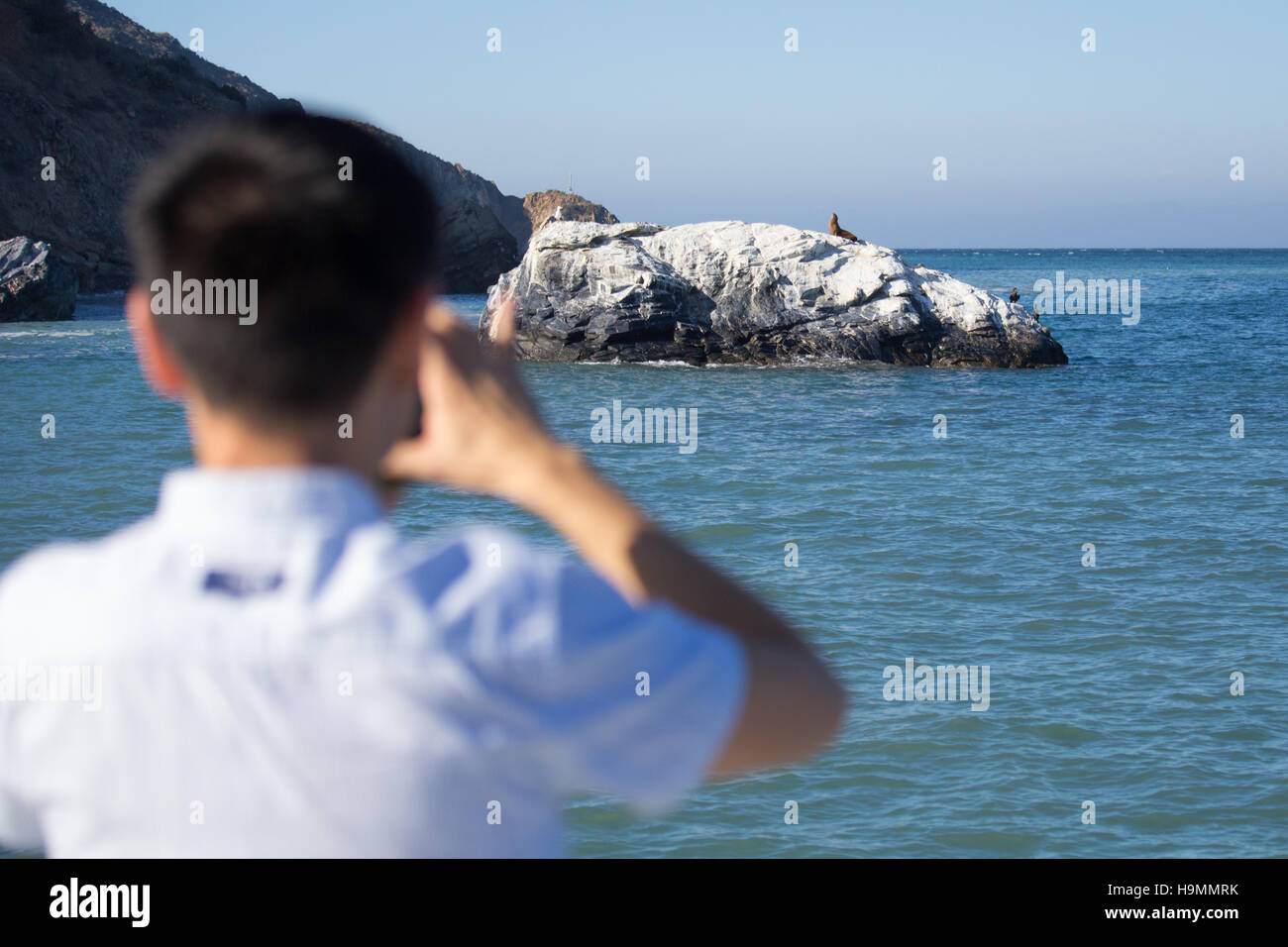 Asian tourist taking a picture on his iPhone, Catalina Island, California - Stock Image