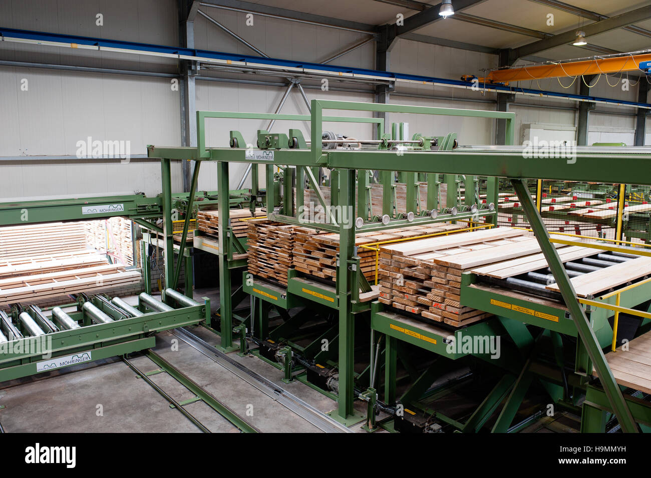 Wooden planks on processing machinery in timber plant, Templin, Uckermark district of Brandenurg, Germany. - Stock Image