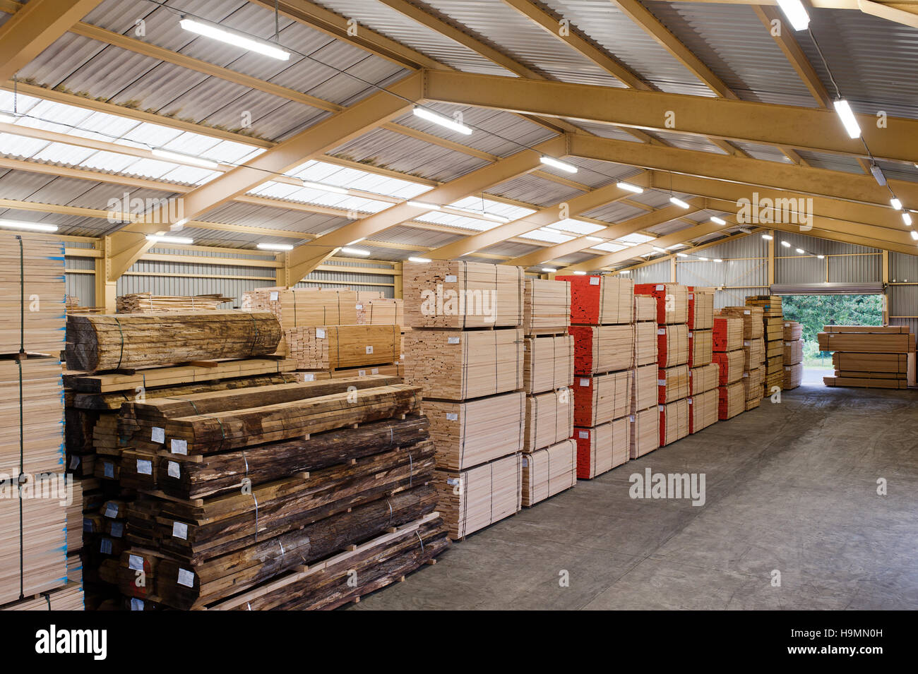 Wood storage warehouse in timber processing plant, Templin, Uckermark district of Brandenurg, Germany. - Stock Image